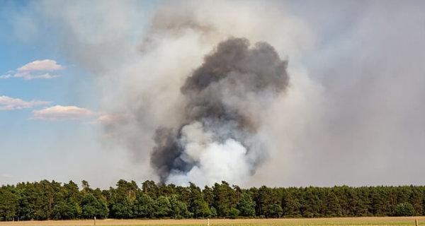 prévention risque incendie en élevage