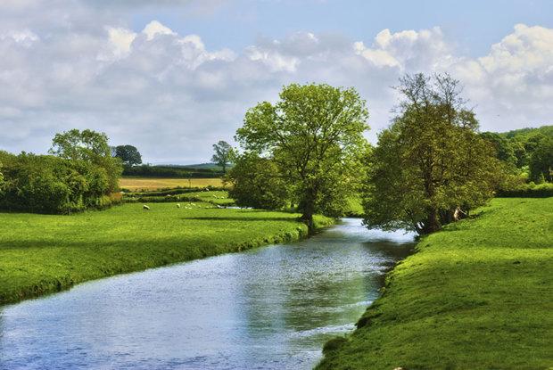 qualité des eaux en bordure d'exploitation agricole