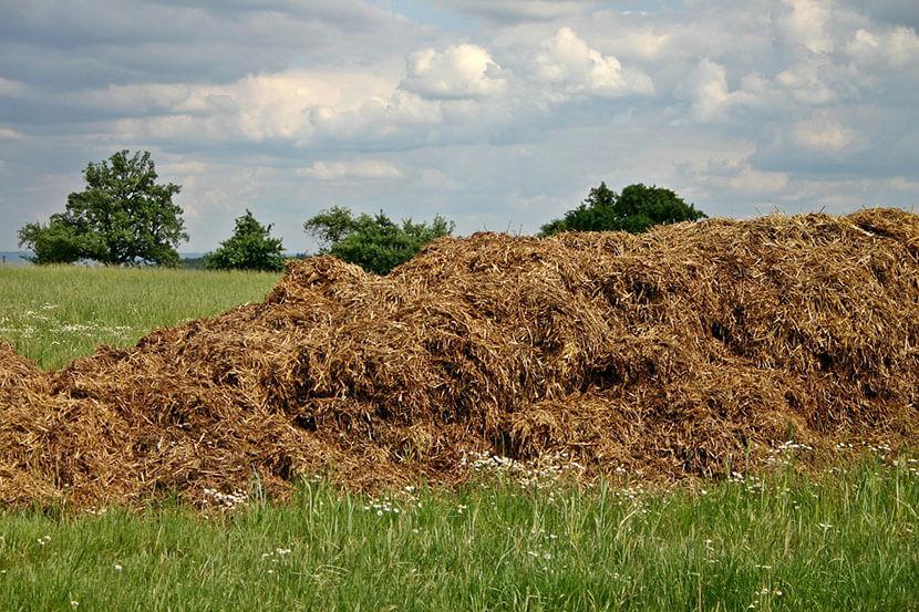 gestion du fumier en exploitation agricole