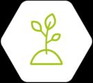 filière productions végétales