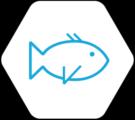 filière aquaculture