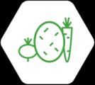 filière légumes