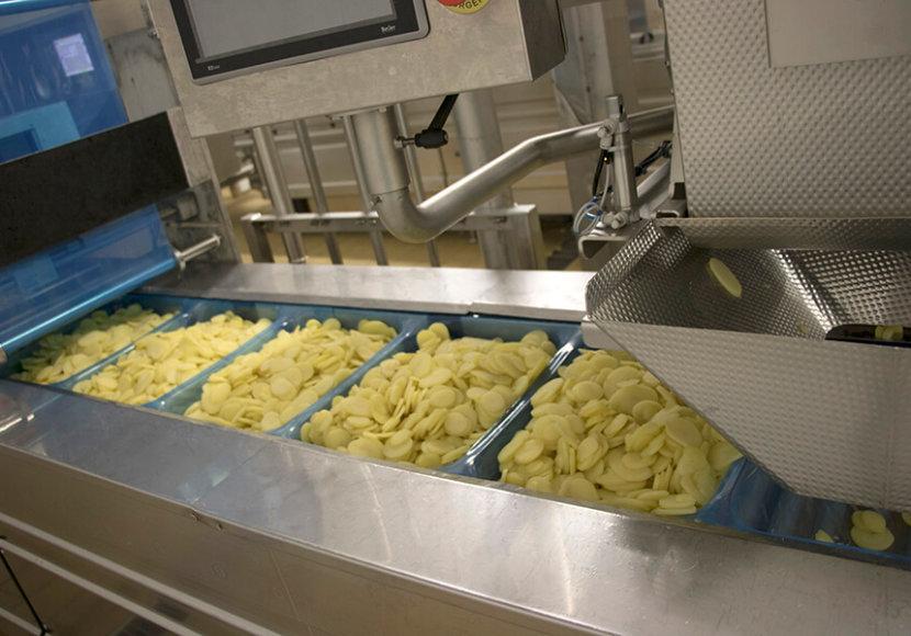 usine de transformation de légumes