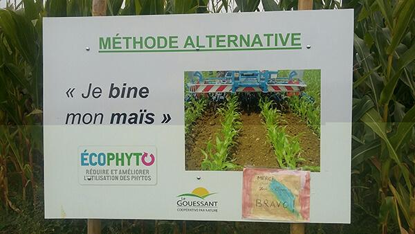 Pancarte binage du maïs