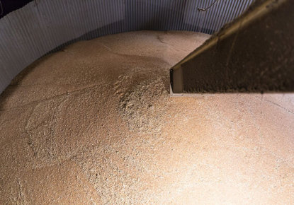 conservation des grains en silo