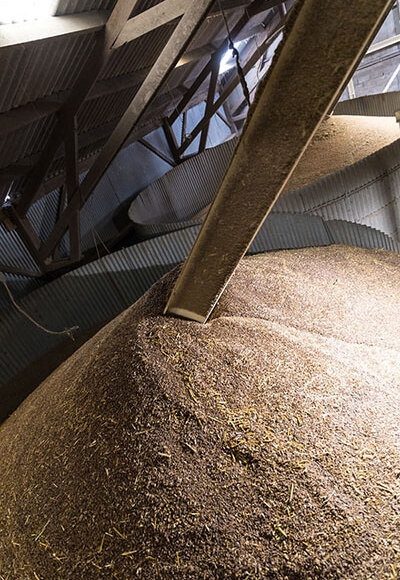 conservation des grains en silo vertical